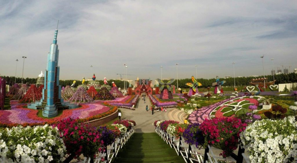 A panoramic view of the Miracle Garden in Dubai