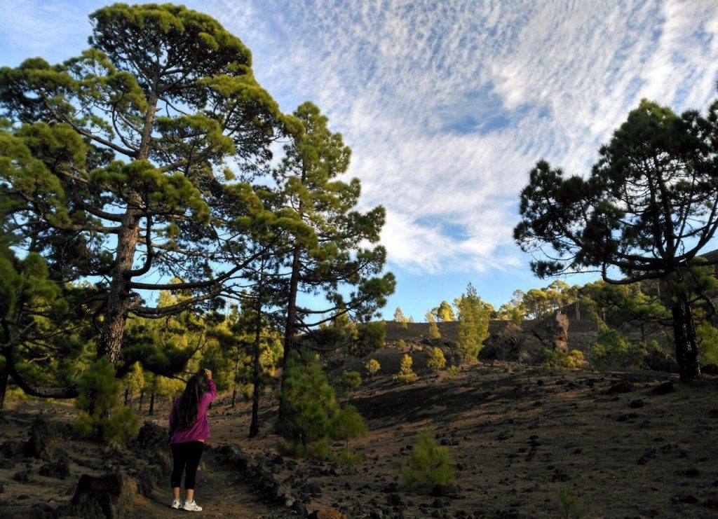 The clouds also have given us a private show during our hike through Circular del Chinyero volcano, in Tenerife, Canary Islands
