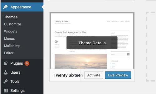 Bluehost wordpress theme preview