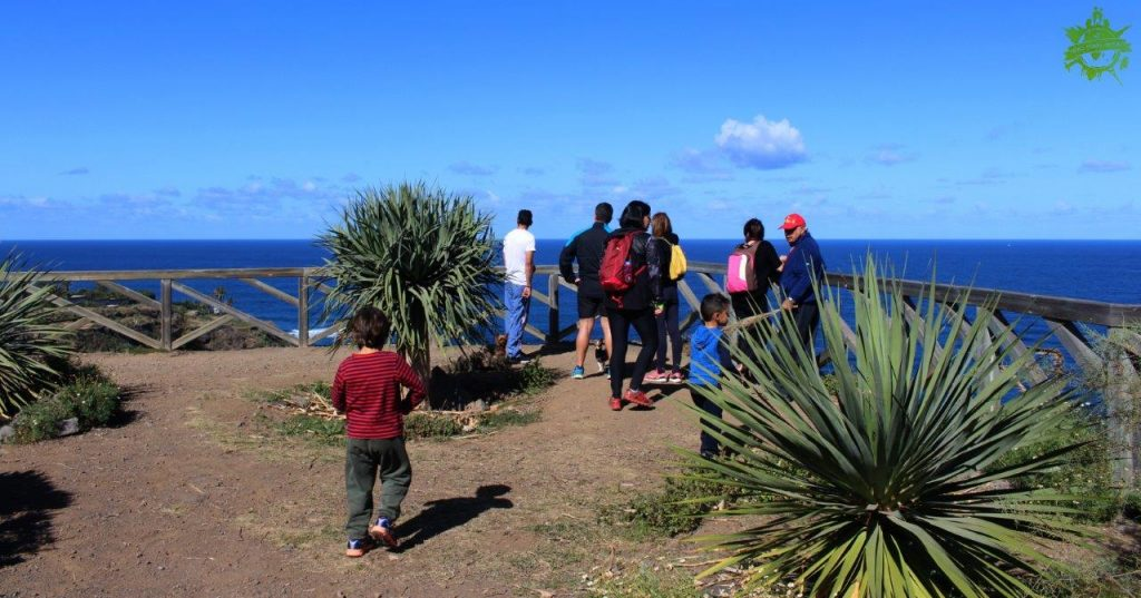 The views during the excursion through Rambla de Castro Tenerife were simply amazing